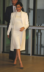 The Duchess of Sussex attends a gala performance of The Wider Earth at the Natural History Museum in London.