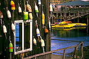 prints-of-america-for-photo-decor-by-wells-imagery, Image of Bar Harbor on Mount Desert Island in Maine, American Northeast by Randy Wells