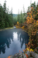 Upper McKenzie River  OR.