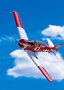 """AT-6 """"Midnight Miss III"""", flown by Dennis Buehn of Carson City, Nevada in the T-6 Gold Race, Sunday at Reno."""