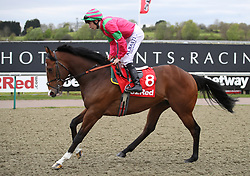 Visionary ridden by jockey Luke Morris going to post prior to the 32Red 3 Year Old All-Weather Championships Conditions Stakes