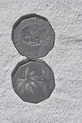 Filipino two piso coin