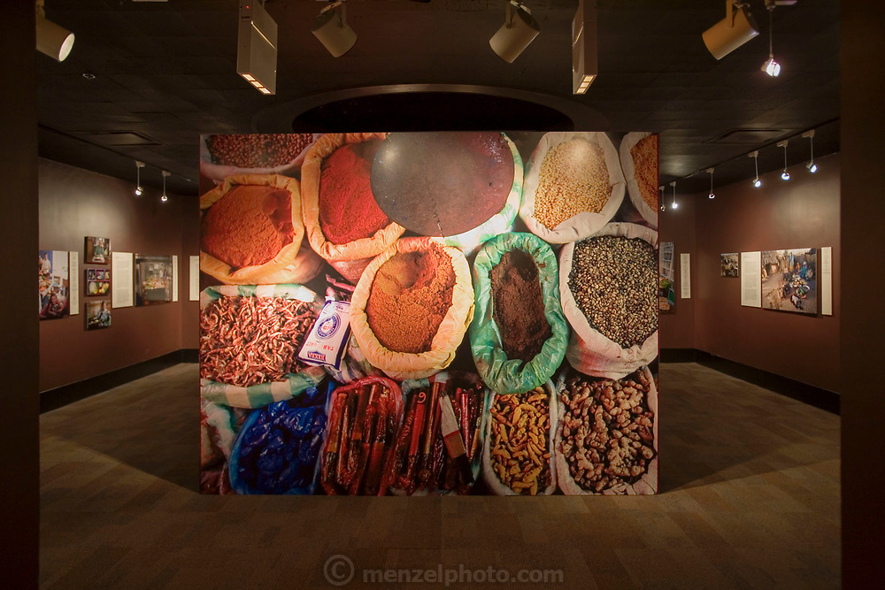 Chicago, IL. Hungry Planet project exhibition by Peter Menzel and Faith D'Aluisio at the Chicago Museum of Science and Industry, More than 375,000 people visited the the exhibition.