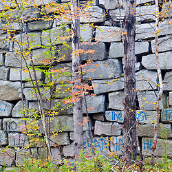 Fall in the forest on Millstone Hill in Barre, Vermont.  Abandoned granite quarry.  Fall. Millstone Trail Association.