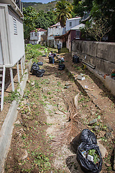 Residents and volunteers clean Savan Gut in  preparation for Tropical Storm Danny as a part of Savan CleanUp Day .  St. Thomas, USVI.  22 August 2015.  © Aisha-Zakiya Boyd