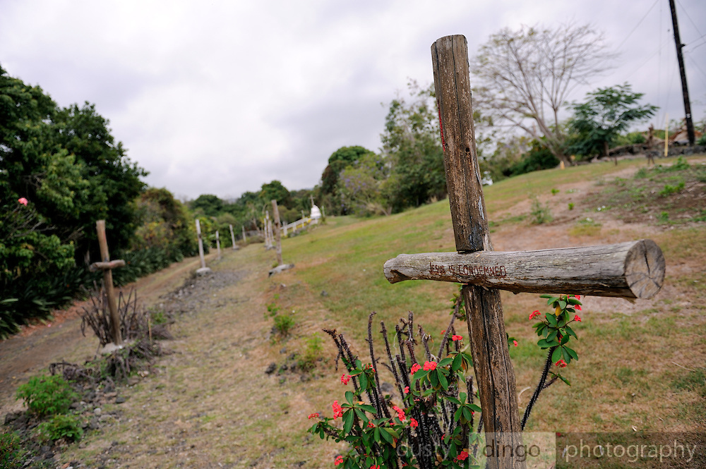 Path lined with rough wooden crosses, denoting the Stations Of The Cross. St. Benedict's Roman Catholic Church, also known as the Painted Church. Honaunau, Kona, Big Island, Hawaii