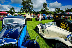 The 44th Biggar Vintage Vehicle Rally held in Biggar on 13th August 2017. General view of the showfield where hundreds of vintage vehicles were on display.<br /> <br /> (c) Andrew Wilson   Edinburgh Elite media