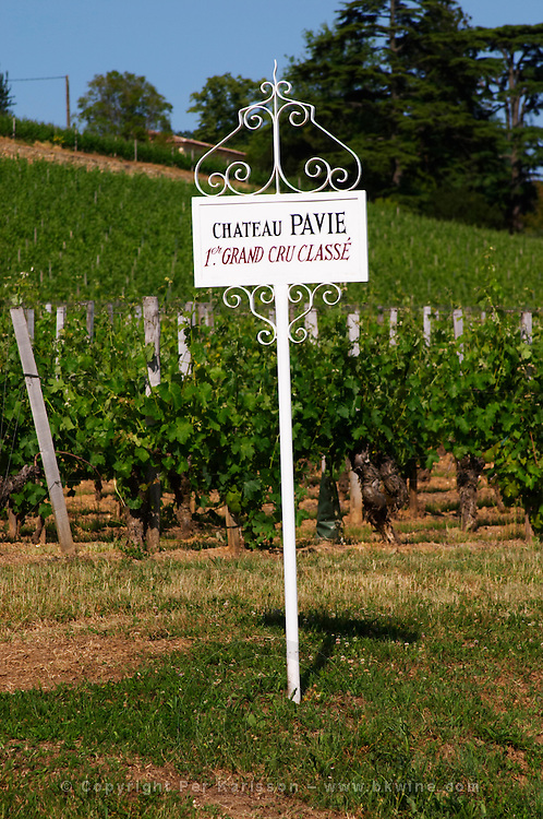 A white sign in the vineyard of Chateau Pavie 1er premier first Grand Cru Classe Saint Emilion Bordeaux Gironde Aquitaine France