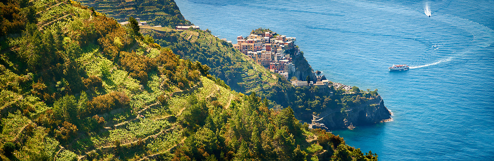 Panoramic of the vineyards and a ferry arriving at Fishing village and harbour of Riomaggiore, , Cinque Terre National Park, Liguria, Italy .<br /> <br /> Visit our ITALY HISTORIC PLACES PHOTO COLLECTION for more   photos of Italy to download or buy as prints https://funkystock.photoshelter.com/gallery-collection/2b-Pictures-Images-of-Italy-Photos-of-Italian-Historic-Landmark-Sites/C0000qxA2zGFjd_k