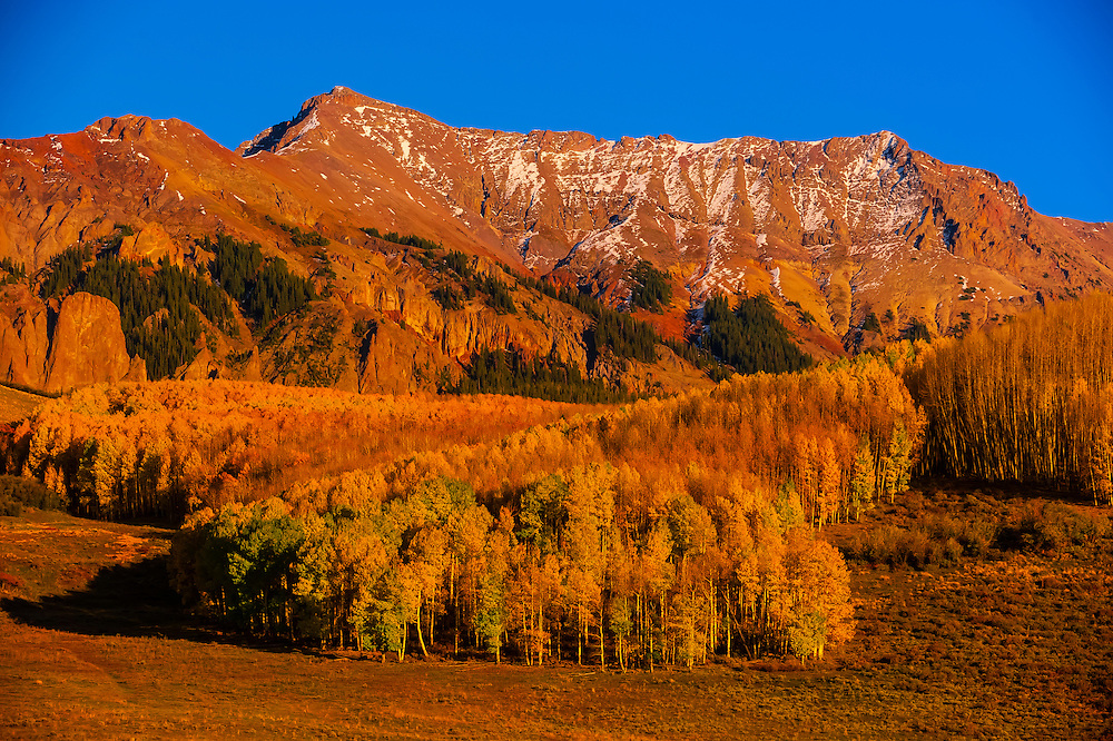 Fall color, Last Dollar Road (in the San Juan Mountains), between Telluride and Ridgway, Colorado USA.