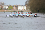 Crew: 115  Aviron Bayonnais, France (FR)/Aviron Toulousain (FR)  Men D 8+<br /> <br /> Veterans' Head of the River 2019<br /> <br /> To purchase this photo, or to see pricing information for Prints and Downloads, click the blue 'Add to Cart' button at the top-right of the page.