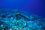 coral rubble surrounds an anchor that turned a <br /> living reef into dead rock by dragging across it, <br /> Turks and Caicos Islands ( Western Atlantic Ocean )