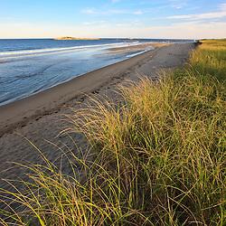 Dune grass and the beach at Popham Beach State Park in Phippsburg, Maine.