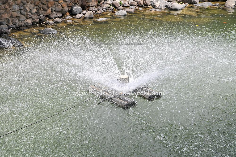 Israel, Kibbutz Ein Gev Fishery, Agitating the water to oxidize