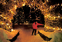 Wyoming: Jackson Hole, elk antlers in town square, winter at night, wyjack105 .  Photo copyright Lee Foster, www.fostertravel.com, 510/549-2202, lee@fostertravel.com