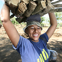 A young woman carries firewood from podding coffee bushes at the Las Lajas coop, part of the UCRAPROBEX coop. UCRAPROBEX a certified Fairtrade producer based in El Salvador.