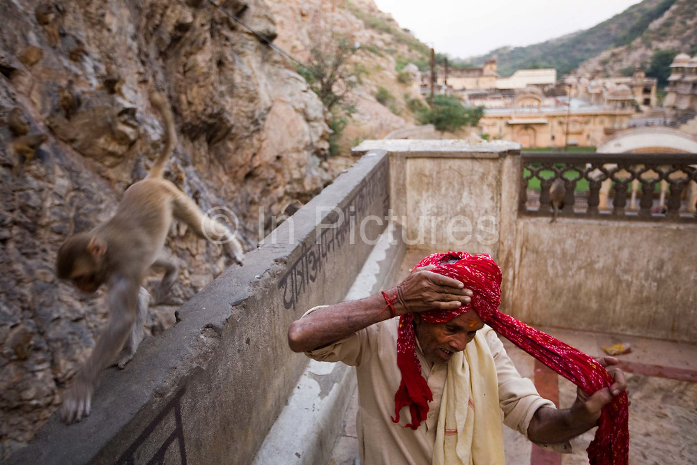 A monkey walks past a man as he ties his turban after bathing in the pool at The Surya Mandir (known as the Monkey Temple), Jaipur, India