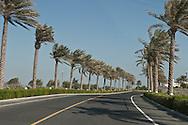 = the new sky scrappers area in west bay  Doha  QATAR ///nouveau quartier des gratte-ciel a west bay  Doha  QATAR +