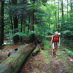 Pownal, VT. Hiking on the Broad Brook Trail in Vermont's Green Mountains.