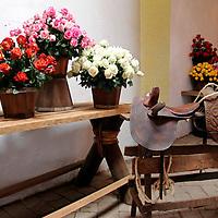 South America, Ecuador, Cayambe. Rosadex Rose arrangements displayed at Hacienda Compania.