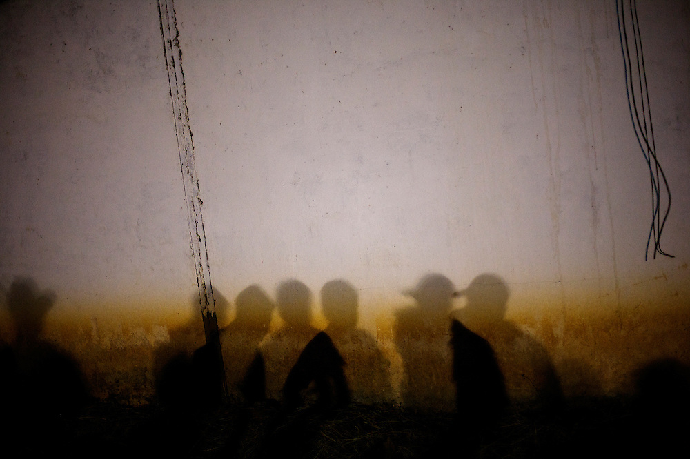Shadows of men on a wall.