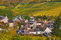 France, Centre-Val de Loire, Cher (18), Berry, région du Sancerrois, village de Chavignol et son vignoble en automne // France, Cher 18, Chavignol village, vineyard in autumn