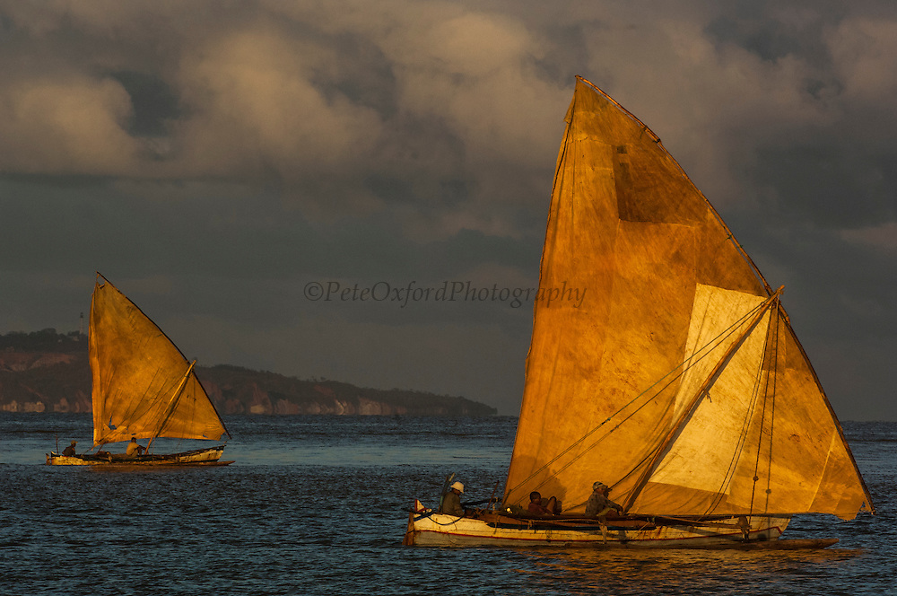 Piroques or outrigger canoes going out to sea from the Bombetoka delta for the day to fish. The narrow wooden canoes with their one stabalizer are remarkably sea worthy. The sails are made from cotton and repaired regularly with odd pieces of sacking to make an interesting patchwork.<br /> Mahajunga.  Western MADAGASCAR