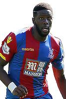 Crystal Palace's Bakary Sako