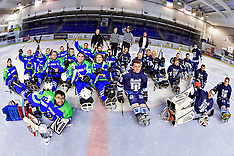 2018 Para Ice Hockey - Tours v Cherbourg, Tours, France