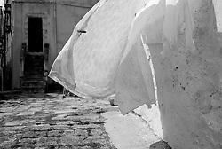 """""""Salento on Street"""".e? un lavoro fotografico che ha come oggetto scene quotidiane, che avvengono in strada o in luoghi pubblici salentini...centro storico di Ostuni biancheria al vento"""