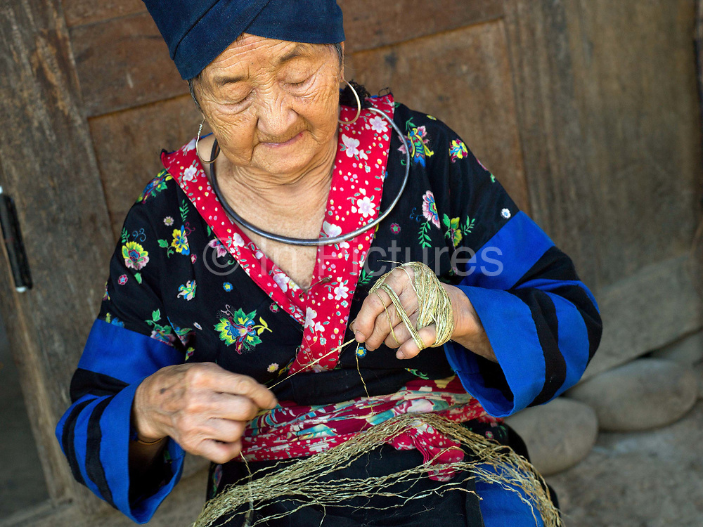 An elderly blind Hmong woman twisting lengths of hemp bark together to form one long yarn, Ban Tatong, Phongsaly province, Lao PDR. The yarn is wrapped around the hand in a figure of 8 creating a ball shape. Making hemp fabric is a long and laborious process; the end result is a strong durable cloth with qualities similar to linen which the Hmong women use to make their traditional clothing. In Lao PDR, hemp is now only cultivated in remote mountainous areas of the north. The remote and roadless village of Ban Tatong is situated along the Nam Kang river (an offshoot of the Nam Ou) and will be relocated due to the construction of the Nam Ou Cascade Hydropower Project Dam 7.