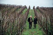 Carlton Cellars Vineyard and farm