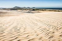 Dunes of Ribanceira Beach. Imbituba, Santa Catarina, Brazil. / <br /> Dunas da Praia da Ribanceira. Imbituba, Santa Catarina, Brasil.