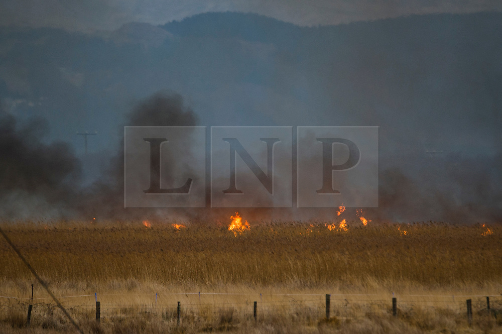 © Licensed to London News Pictures. 14/02/2014. Wales, UK Large parts of Cors Fochno (Borth Bog) wetland nature reserve are on fire following the reported collapse of high voltage power lines during the night. The fires, stretching in a line some 250m wide are burning 200m from nearby houses, caravans and  church in Borth village on the west wales coast. Photo credit : Keith Morris/LNP