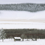 An abandoned homestead in Huns Valley near Polonia, Manitoba, Canada.