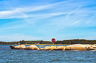 Stop sign on some rocks in the middle of Penobscot Bay, Maine