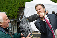 UK. London. The Village Green: From Blair to Brexit.<br /> A story on the relationship between the Media, Politicians and the public as they come together on College Green, a small patch of land next to The Houses of Parliament in Westminster. <br /> Photo shows the BBC's Matt Frei interviewing an owl on the Green five days after a General Election returned a new coalition Government formed of the Conservatives and Liberal Democrats. <br /> Photo©Steve Forrest/Workers' Photos