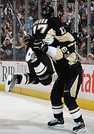 December 11, 2008 - Petr Sykora #17 of the Pittsburgh Penguins celebrates his goal during the game against the New York Islanders.  (Photo by Joe Sargent/Pittsburgh Penguins)