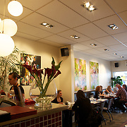 A Lunch scene at Molten. Mount Eden Road. Auckland, New Zealand, 11th November 2010. Photo Tim Clayton.