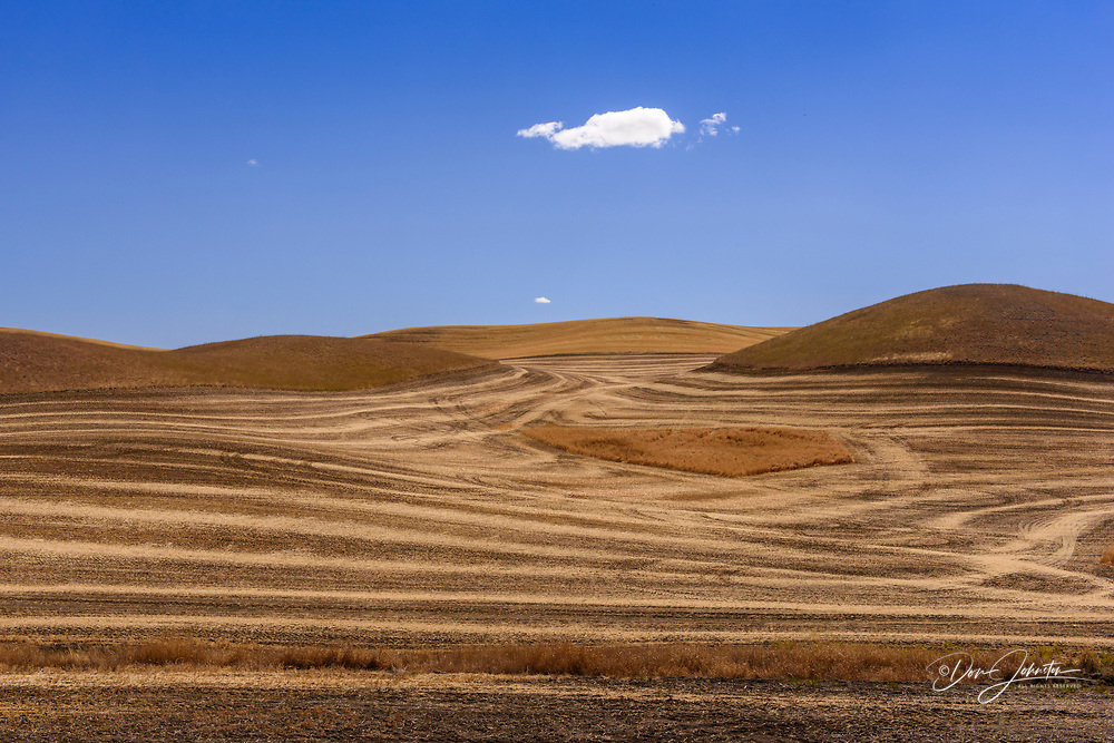 Mowing and harvest patterns in the Palouse landscape in late summer, Whitman County, Washington, USA