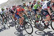 Vincenzo Nibali (ITA - Bahrain - Merida), during the UCI World Tour, Tour of Spain (Vuelta) 2018, Stage 7, Puerto Lumbreras - Pozo Alcon 185,7 km in Spain, on August 31th, 2018 - Photo Luis Angel Gomez / BettiniPhoto / ProSportsImages / DPPI