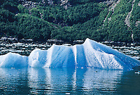 An  iceberg floating the waters of  Tracy Arm, Southeast Alaska.  The blue color is created by the thickness, density and internal alignment of the large ice crystals, which causes greater refraction of light and absorbs the red spectrum.  Therefore, the visible light is blue or blue-green.