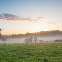 Fog in a field in Durham, New Hampshire.