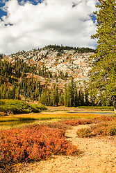 """""""Mud Lake Morning 4"""" - Photograph shot in the early morning of Mud Lake in California's Plumas National Forest."""