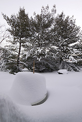 """27 January 2011 Just before Sundown. The """"Table of Snow"""" in my backyard in the aftermath of yet another storm."""