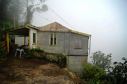 Twyman Old Tavern Coffee Plantation in Jamaica's Blue Mountains.