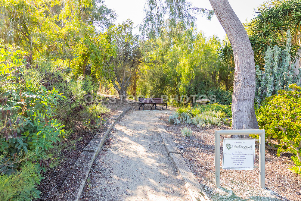 Nature Trail at Niguel Botanical Preserve