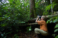 A 9 year-old boy photographing a wild orangutan in the rain forest in Borneo.