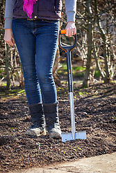 Spade ready to dig over bare ground