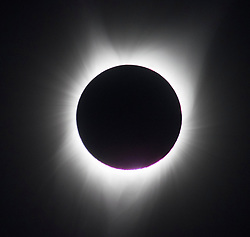August 21, 2017 - Corvallis, Oregon, U.S - The total solar eclipse as seen from the State University campus in Corvallis. The eclipse is the first coast-to-coast solar eclipse in almost 100 years and will pass  across the U.S. at 2,000 mph. Millions of people are staking out prime viewing spots to watch, especially along the path of totality — the line of shadow created when the sun is completely obscured. The path of totality, darkness will last no more than a few minutes. (Credit Image: © Robin Loznak via ZUMA Wire)